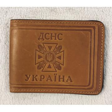 Обкладинка ДСНС України А-31